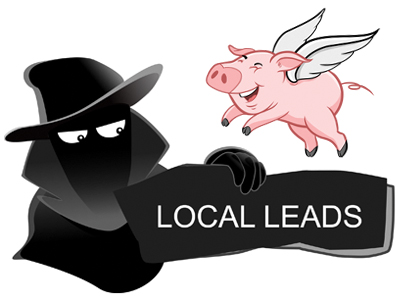 local leads warning for cheap websites
